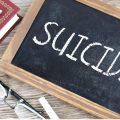 Suicide and Politics