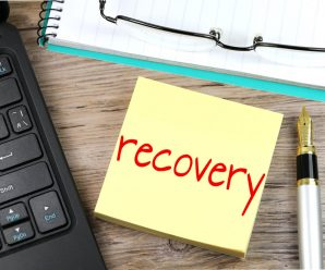Formulating a Recovery Plan