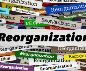 Phases of the Mourning Process; Reorganization